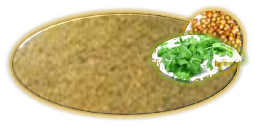 Coriander Powder - Dhania Powder
